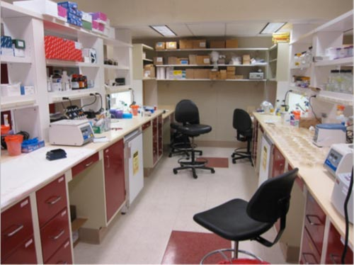 Biofilms And Applied Biotechnology Laboratory Resources